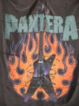 Flagge Pantera Guitar