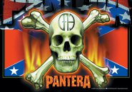Flagge Pantera South Flag